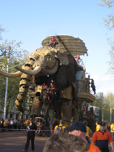The Sultan's Elephant